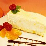 Mandarin Orange Cheesecake